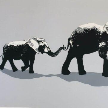 Elephant Walk Grey