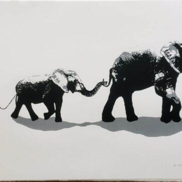 Elephant Walk, White main